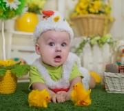 baby_004